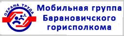 Мобильная группа Барановичского горисполкома